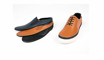 En sko til alle anledninger