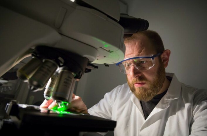 Nylon, fleece og polyester har nå havnet under forskernes luper. Her inspiserer imidlertid SINTEF-forsker Andy Booth karbon-nanorør. Foto: Thor Nielsen.