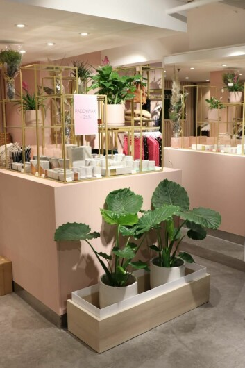 Planter og livsstilsproukter bidrar til å gi kundene en ny og annerledes opplevelse.