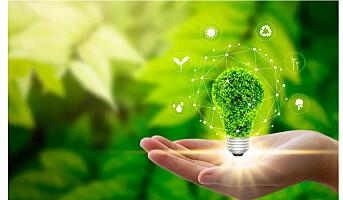 Vanskelig å velge bærekraftig