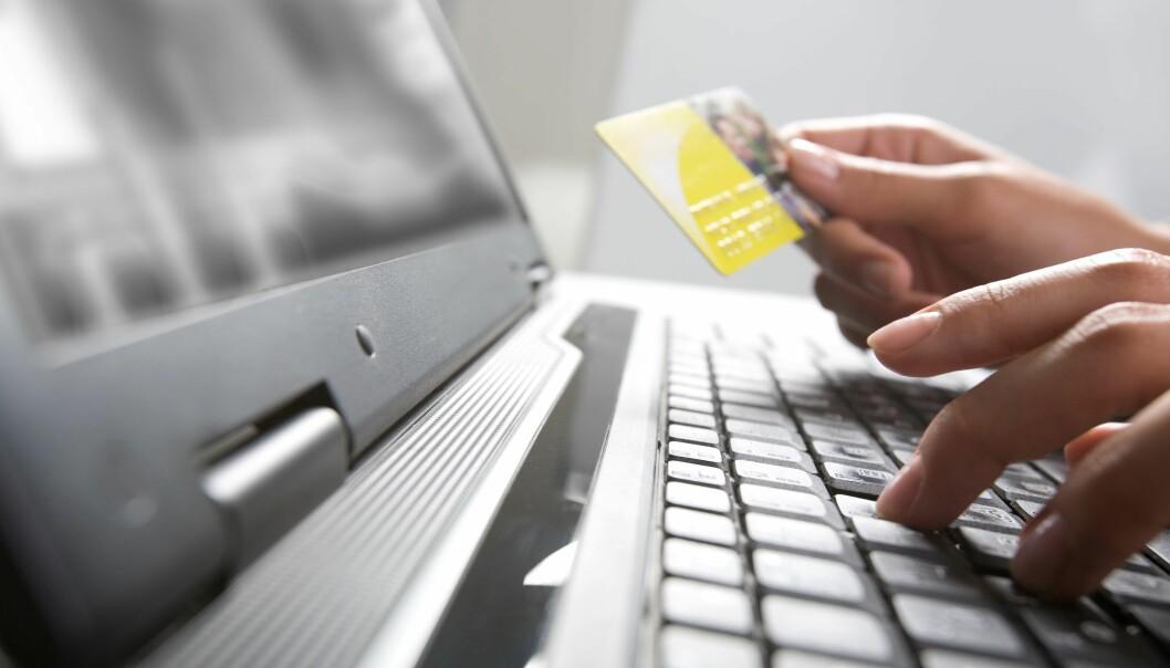 Mange nyetablerte selskaper satser på netthandel